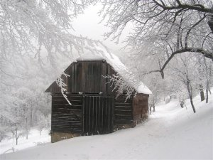 My barn...