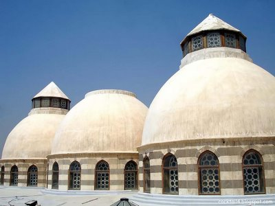 The domes from the Khan's roof