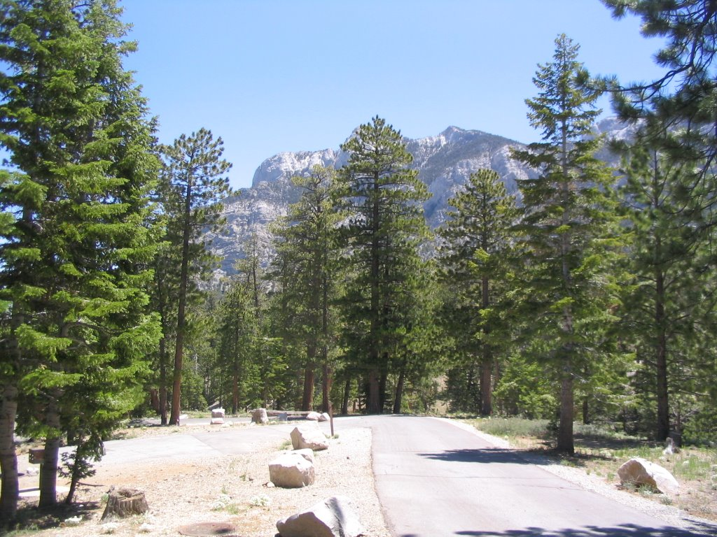 The Dolomite Campground