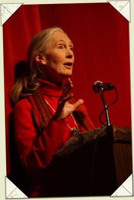 Dr. Jane Goodall - image courtesy of Jane Goodall Institute