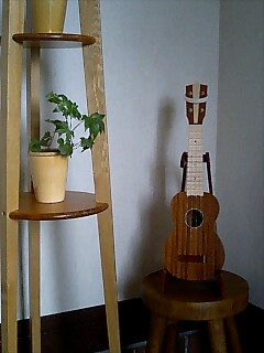 My Bruko ukulele with whiteband on the head