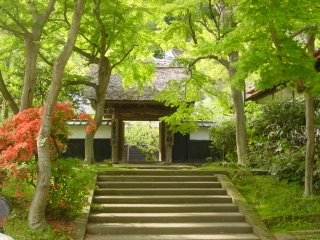 Engakuji Temple, Kamakura