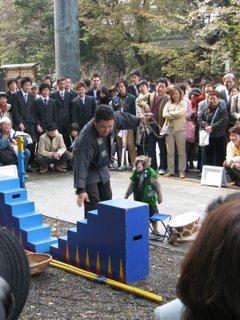 Performing monkey at Yasukuni Jinja