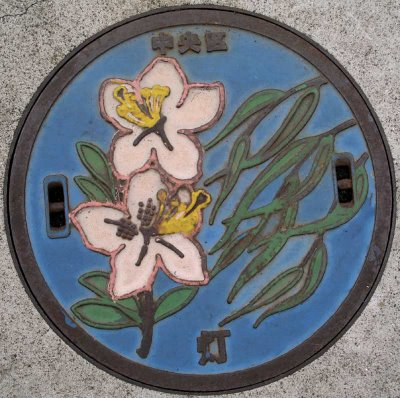 Decorative manhole cover in Chuo ward, Tokyo, Japan.