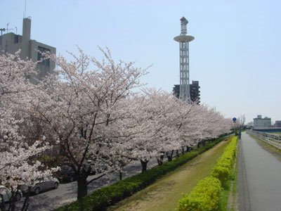 Tenpaku River with the Tenpaku Ward Office Tower