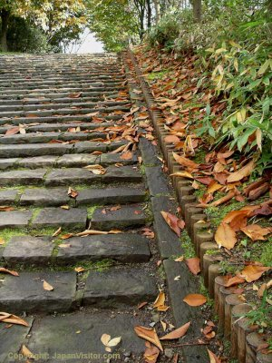 Takushoku University stone steps in autumn.