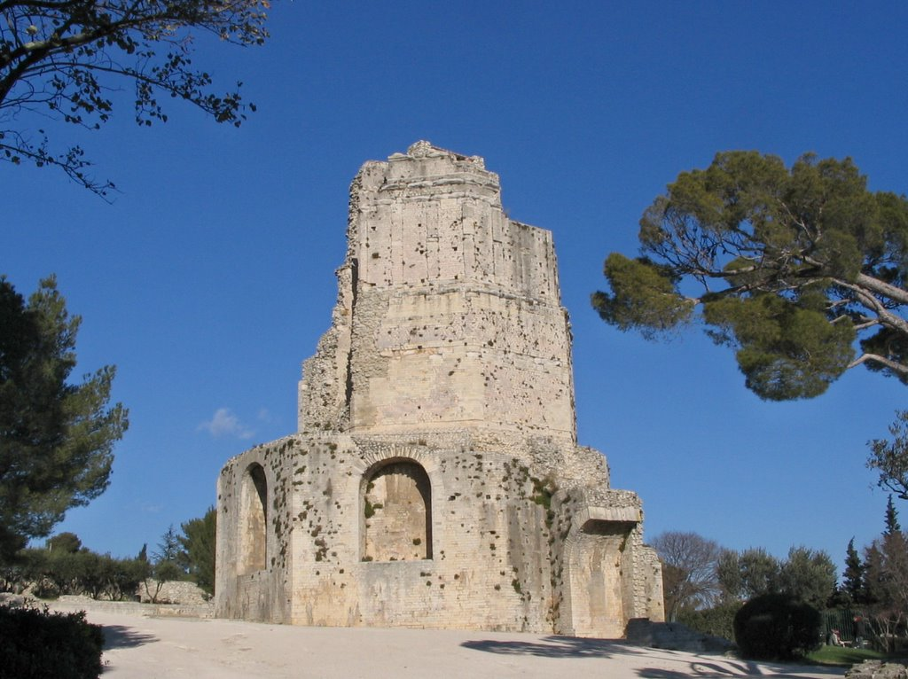 Maxted travels with modestine 1 nimes and avignon - Tour magne nimes ...