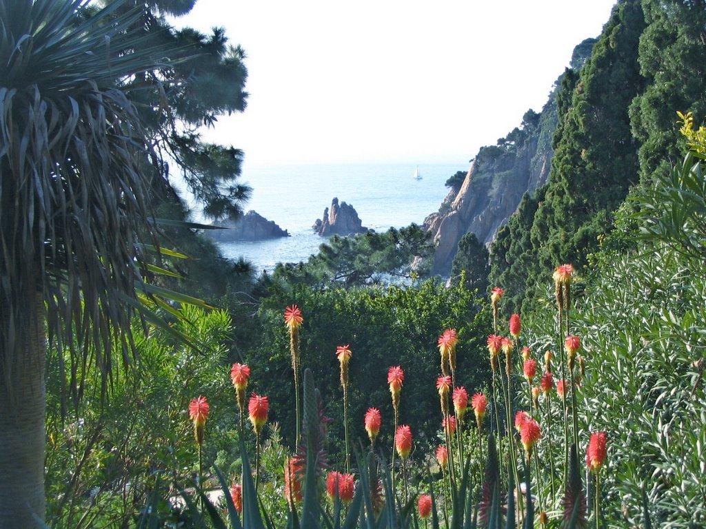 Maxted travels with modestine 1 girona and barcelona for Barcelona jardin botanico