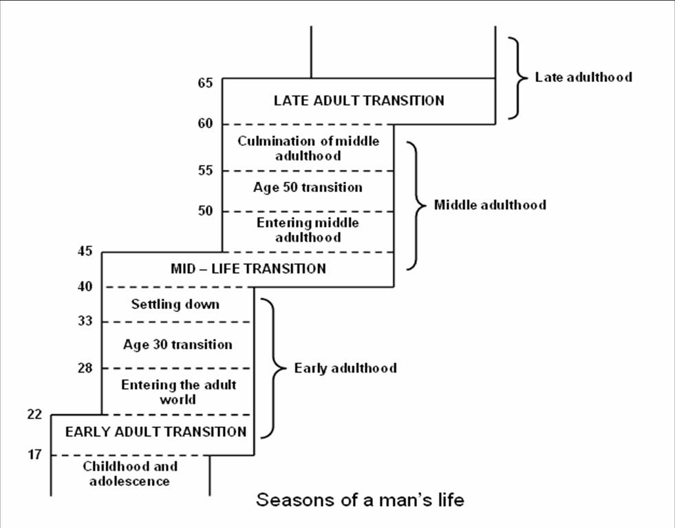 an analysis of the model of the seasons of mans life by daniel levinson Seasons of a man's life by daniel levinson paperback £1303 only 15 left in stock (more on the way) the seasons of a man's life and the seasons of a woman's life the model makes sense.