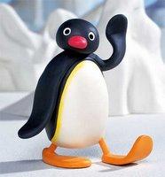 pingú!