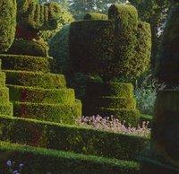 Jardines verticales topiarios y laberintos historia del for Historia de los jardines verticales