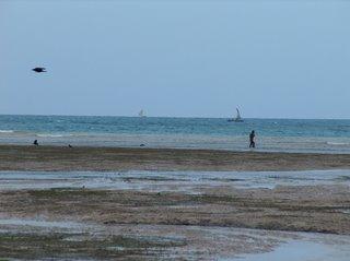 beach on the west coast of Zanzibar