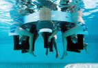 Mesa acuática