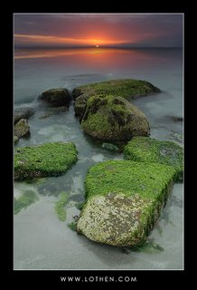 nature photography, Nature Picture Library,free nature wallpapers,