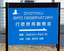 Gyotoku Bird Observatory - Jan 15 2005