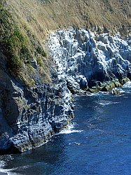 Jougashima - Cliff face famous for Temminck's & Pelagic Cormorants - Jan 28th 2005