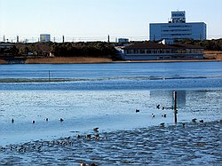 Looking over the Yatsuhigata Tidal Flat to the Nature Observation Center - Jan 15 2005