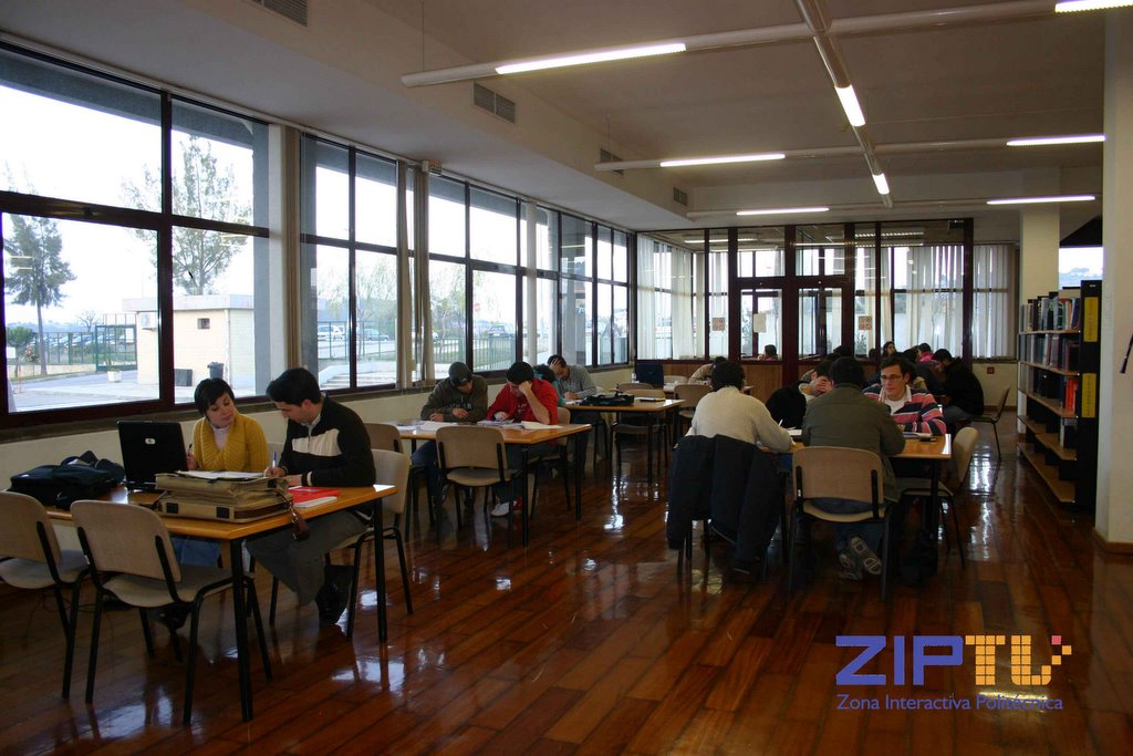 Zip tv zona interactiva polit cnica biblioteca virtual for Politecnico biblioteca
