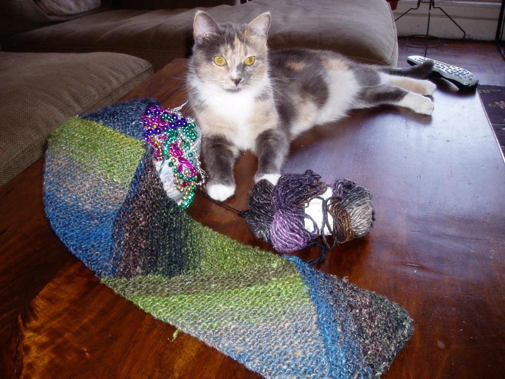 Knitting Rhyme Off Jumps Jack : Off jumps jack md scarf progress
