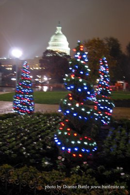 Christmas trees with US Capitol in the background