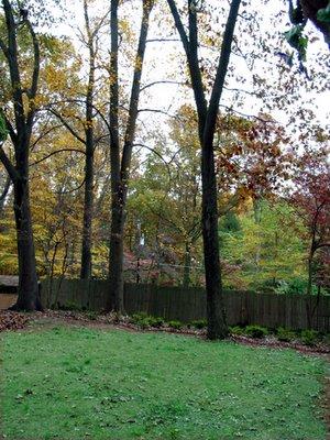southeast side garden