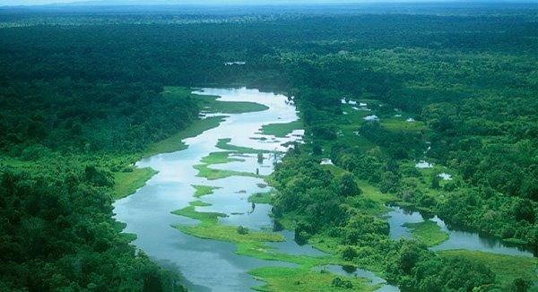 Resultado de imagen de parque nacional madidi