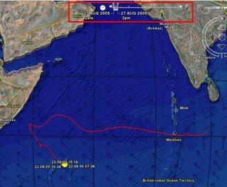 Whale Shark Migration November 2005