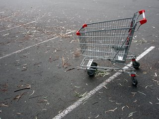 empty shopping cart in an empty can parking