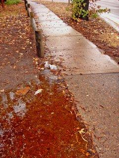 wet pathwalk
