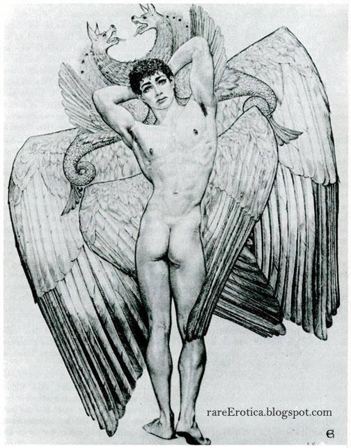 hermaphrodite pics