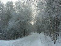 La strada che porta al frigo
