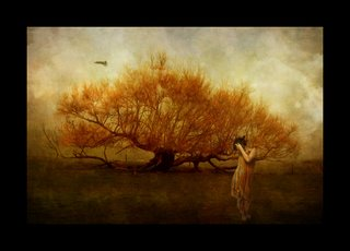 Girl_and_Bird_II_by_kayceeus-a sOoL!!