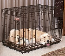 Double Dog Crate For  Dogs Uk