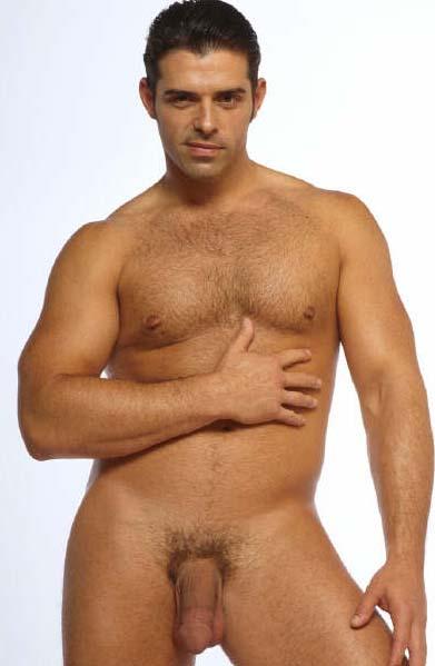 gay male anal porn pics