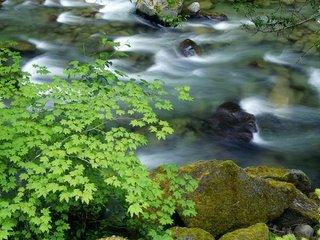 River flow - Panta rei