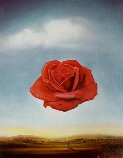 Dali's Rose