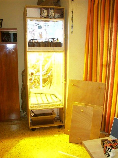 Cultivo indoor indoor cultivo de hierba como hacerte for Bombillas cultivo interior