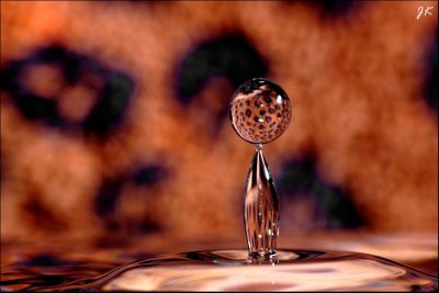 Stillwater Captured Drops » image 63836282.3gigyyrR