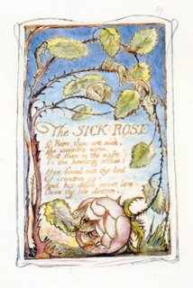 William Blake, Songs of Experience, The Sick Rose
