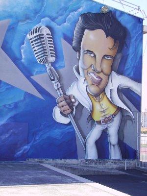 Snake, mural for La Gespe, Tarbes, 2006