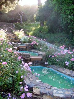 Morcom Ampitheatre of Roses, Oakland Rose Garden, California