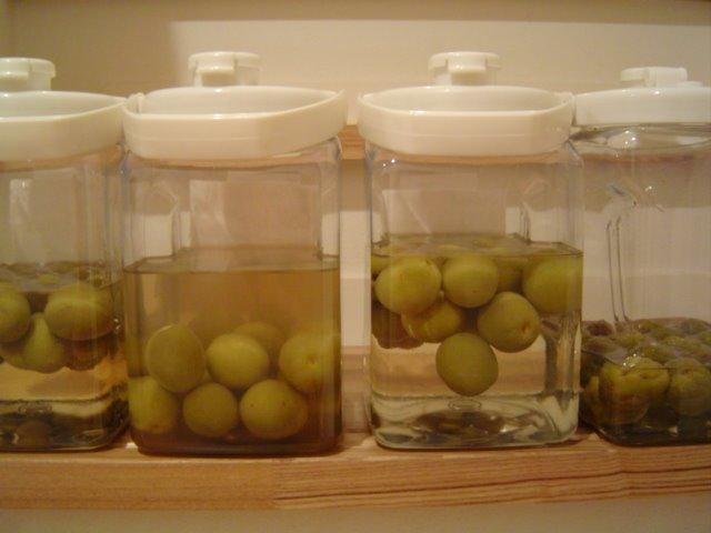 how to make plum liquor