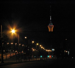 Basket on Vilnius TV tower (1)