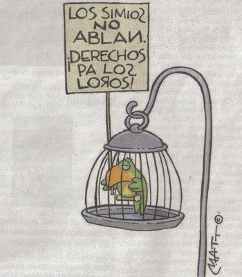 dibujo visto en El País Domingo, 21 de mayo 2006