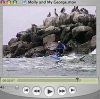 Surfing with George and Molly