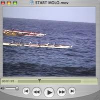 Molo start