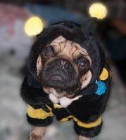 Beedog Howie