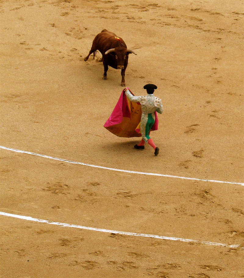 bullfight #1; click for previous post