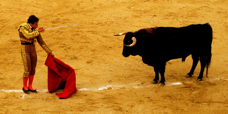 bullfight #3; click for previous post