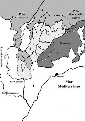 Sectorización fitogeográfica del valle del Genal